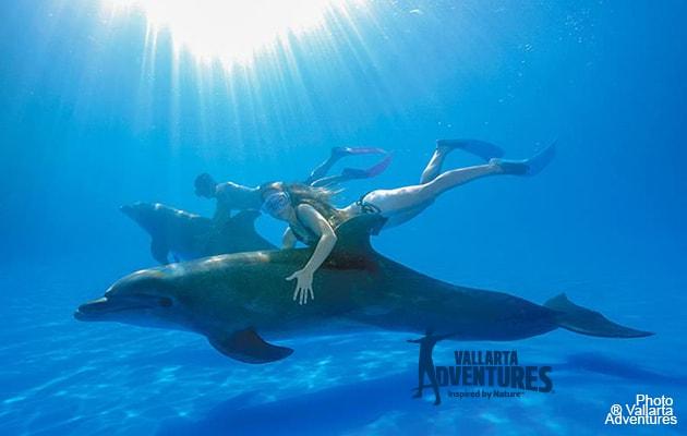 5 large swimming pools infinity at Grand Venetian Vacation rentals
